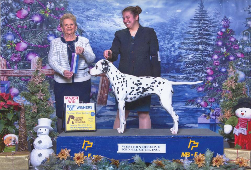 Judge: Mrs. Rita Holloway 12-9-17 Handler: Paris Dizak